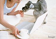 リビングダイニングに足元から暖める床暖房を設置。ホコリをたてずにスピーディーに暖めるから、快適で衛生的な暖房です。