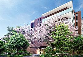 穏やかな街に、緑の潤いと桜の彩り。新しい街区の誕生です。