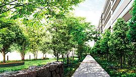 健やかな暮らしを奏でる、緑のオープンスペース。