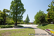 桃井原っぱ公園 約530m(徒歩7分)