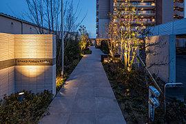 植栽と間接照明が、住まう方を優しく迎え入れる空間。オンとオフの気持ちを切り替え安らぎの空間へと導きます。