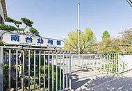 南台幼稚園 約350m(徒歩5分)