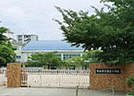 松山市立東雲小学校 約909m(徒歩12分)