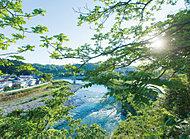 広瀬川 約380m(徒歩5分)