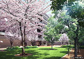 武蔵野の自然と呼応する、緑豊かな「ガーデン」。桜やモミジ、ドングリの森など、多種にわたる木々が、豊かな四季を彩ります。子どもの遊び場、水盤を囲むデッキテラスなど、住まう人が思い思いに心地よい時間を過ごせます。
