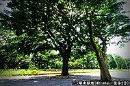 三ツ塚南緑地 約140m(徒歩2分)