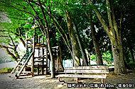 緑町ふれあい広場 約340m(徒歩5分)