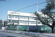 区立多聞小学校(約240m/徒歩3分)