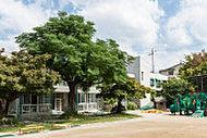 陽明旭幼稚園 約940m(徒歩12分)