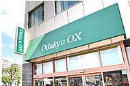 odakyuOX大和プロス店 約930m(徒歩12分)