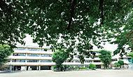 調布市立第一小学校 約180m(徒歩3分)