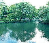 有栖川宮記念公園 約900m(徒歩12分)