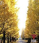 慶應義塾大学 日吉キャンパス 約1,740m(徒歩22分)