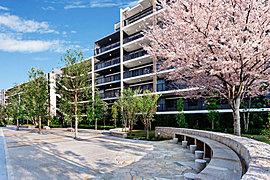 マンション内には自由利用空地を利用した、面積約860m2の「四季のコミュニティ広場」が生活を彩ります。