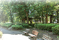 目黒区立区民センター公園 約40m(徒歩1分)