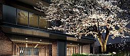 既存樹の桜が迎える、風格のエントランス。