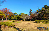 松戸中央公園 約610m(徒歩8分)
