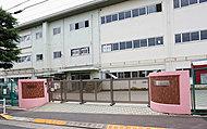八王子市立第三中学校 約880m(徒歩11分)
