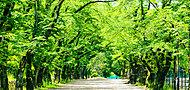 富士森公園 約1,370m(徒歩18分)