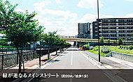 緑が連なるメインストリート 約20m(徒歩1分)