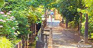 六辻水辺公園 約170m(徒歩3分)