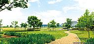 東京臨海広域防災公園 約310m(徒歩4分)