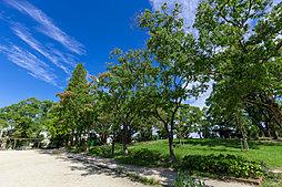 虹ヶ丘公園 約300m(徒歩4分)