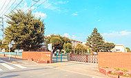 城東小学校 約610m(徒歩8分)※2