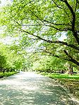 大宮公園 約1,920m(徒歩24分)