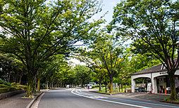 駒沢オリンピック公園 約930m(徒歩12分)