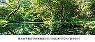 東京大学総合研究博物館小石川分館 約470m(徒歩6分)