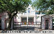 埼玉大学附属小学校※3 約1,020m(徒歩13分)