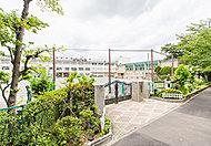 新井小学校 約550m(徒歩7分)