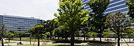 中野四季の森公園 約990m(徒歩13分)