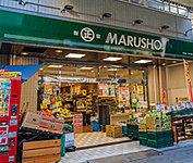 丸正江戸川橋店 約80m(徒歩1分)