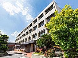 東海中学・高等学校 約1,520m(徒歩19分)