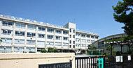 葛飾小学校 約660m(徒歩9分)