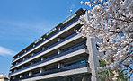 地を讃え、礼を尽くす集邸。京都嵯峨に景勝の邸、誕生。