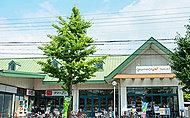 スーパーにっさん嵯峨店 約640m(徒歩8分)