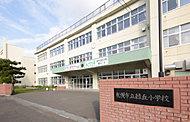 市立緑丘小学校  約1,240m(2016年8月撮影)