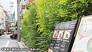大隈通り商店会 約10m(徒歩1分)