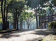 菊川公園 約70m(徒歩1分)
