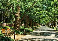 神宮外苑 約2,270m(徒歩29分)