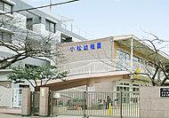 学校法人 專念寺学園 こまつ保育園・幼稚園 約460m(徒歩6分)