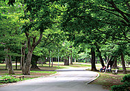 円山公園 約950m(徒歩12分)