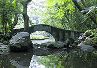 有栖川宮記念公園 約1,550m(徒歩20分)