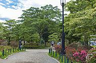 区立平成つつじ公園 約440m(徒歩6分)