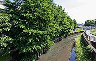 秋ヶ瀬緑道 約300m(徒歩4分)