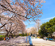 元横山公園 約890m(徒歩12分)