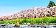 浅川 約710m(徒歩9分)(平成28年4月撮影)